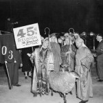 These sheep seem ready to play their part in the 1948 alumni parade.