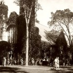 Then: (October) Elm trees, most lost to disease over the years, create a visual harmony with the ivy-covered Chapel in this view of the busy Quad.   Undated photograph by Kahill Photo Studios, gelatin silver print, the Edmund S. Muskie Archives and Special Collections Library.