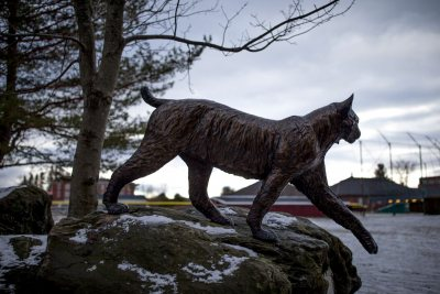 A late winter afternoon in the vicinity of Merrill Gymnasium and Commons. The Bobcat statue.