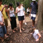 Visiting Cu Chi Tunnels, Ali going down into a tunnel.