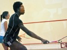 Women's squash falls at top-ranked Harvard