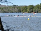 Men's rowing sweeps eights races at Presidents Cup