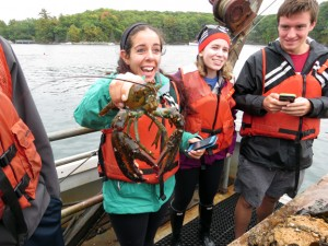 Students in Invertebrate Zoology (Bio 211) got a first hand exposure to dredge sampling for benthic invertebrates in Fall 2014.