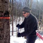Brett coring trees.