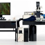 Bates Awarded $791,480 NSF – MRI Grant to Acquire a Confocal Microscope