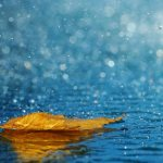 Increased Precipitation with Climate Change