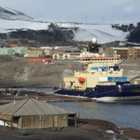 Disturbance in the Antarctic and Fouling Communities
