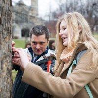 Dendrology class develops campus tree website