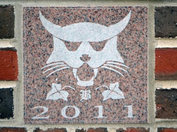 The 2011 ivy stone is on the Alumni Walk side of Pettengill