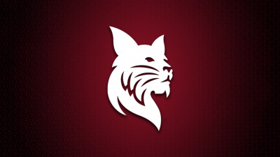 White Bates Bobcat over garnet background with shadow lighting