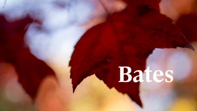 White Bates wordmark over large red maple leaf