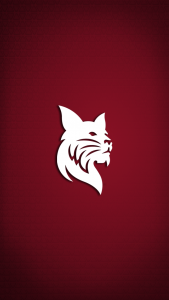 White bobcat over garnet background with shadow lighting