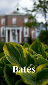 Closeup of greenery with Hathorn hall in background with white Bates wordmark