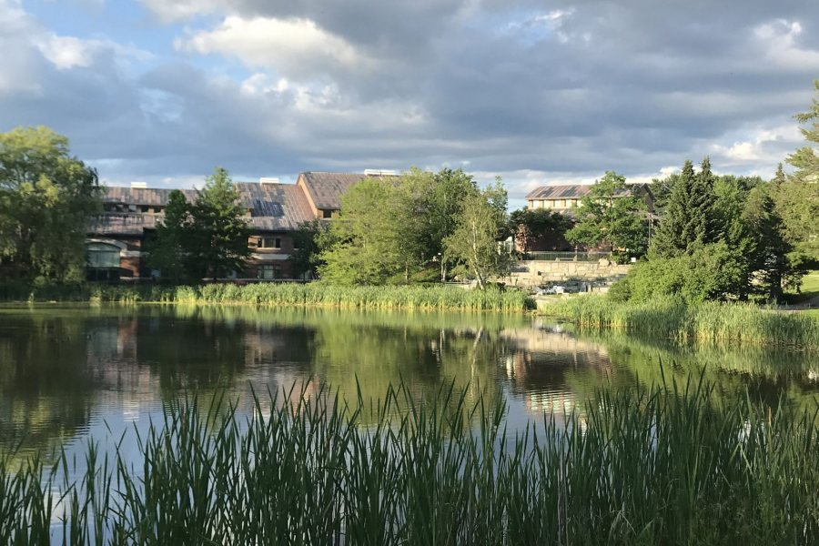With Olin Arts Center beyonds its shores, Lake Andrews is tranquil and sun-splashed on a July afternoon.