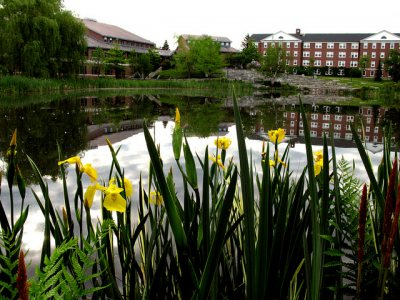 Summer Campus scenes 2008