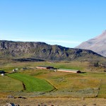 Sheep farming, introduced in this area by the vikings a thousand years ago, has made a comeback as one of the major industries in southern Greenland.