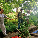 The Bronx is Blooming engages communities in environmental stewardship.