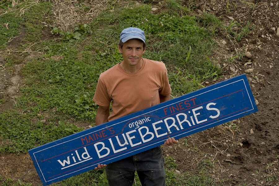 Nicolas Lindholm '86 owns Blue Hill Berry Co. in Penobscot, Maine. (Phyllis Graber Jensen/Bates College)
