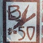 1950-ivy-03020001WEB