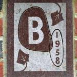 1958-ivy-img_4869WEB