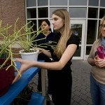 Julia Wilson '10 organizes a Carnegie Science greenhouse plant sale in front of Pettengill Hall as her mother Kathy Tirrell waits to make a purchase.
