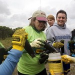 From left, Kerrin Staskawicz '06, her mother Martha O'Shea Staskawicz '73, and volunteers Briana Meyer, Caitlin Lactot, and Mady Gorrell dip tidal plants in antifungal powder before planting them.