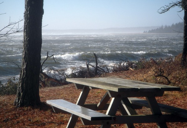 The roiling sea in December 2009 threatens the picnic area at Popham Beach. Photography by Stephen Dickson.