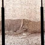 Les Femmes du Maroc: Reclining Odalisque, 2008, Image 3 panels, each 60 x 48