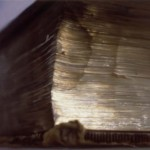 Gold No. 10,  1998 Oil on canvas,  31 x 40 1/2 in (79 x 103 cm)  Collection of Driek and Michael Zirinsky, Boise, Idaho