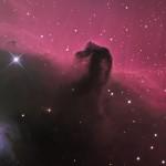 Martin Pugh, (Australia) IC434 in Orion (The Horsehead Nebula), Hahnemuhle Fine Art Photo Rag Bright White 310 paper, 13 x 19 inches