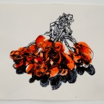 Dawn Clements, 17 drawings of milliner berries, in memory of my father, 2009 (detail)
