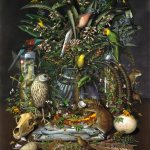 Isabella Kirkland, Gone, from the Taxa portfolio, 2008, digital print, 35 x 26 1/2 inches, collection of Bates College Museum of Art