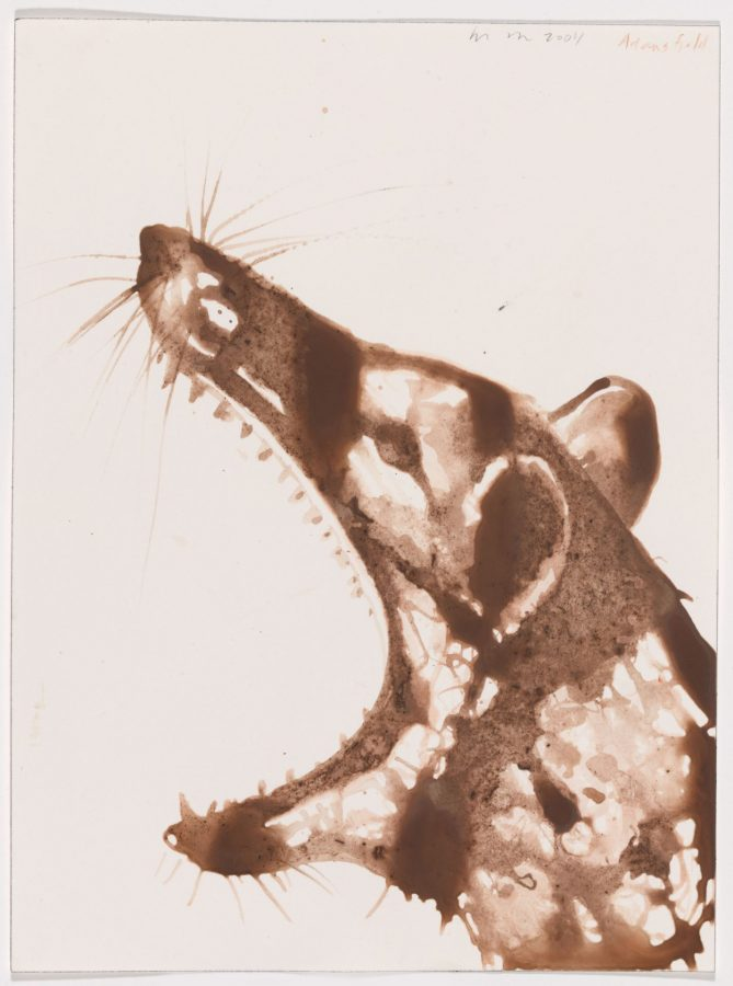 Alexis Rockman (American, b. 1962), Thylacine Drawing, 2004, soil and polymer on paper, 12 x 9 inches, Bates College Museum of Art purchase with support from the Robert and Minna Johnson Art Acquisition Fund, 2009.1.1