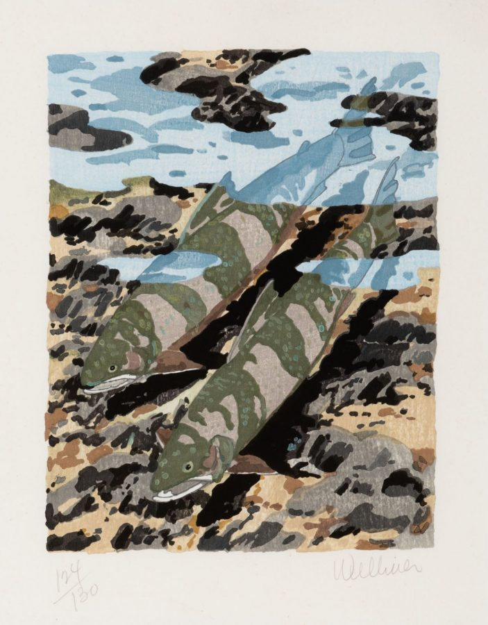 Neil Welliver, Trout, 1981, woodcut, ed. 124/130, 2020.1.50