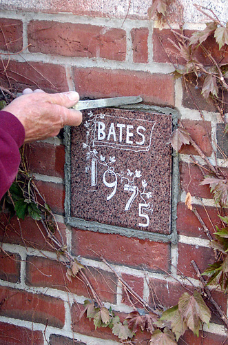 Ivy Stone Tradition News Bates College