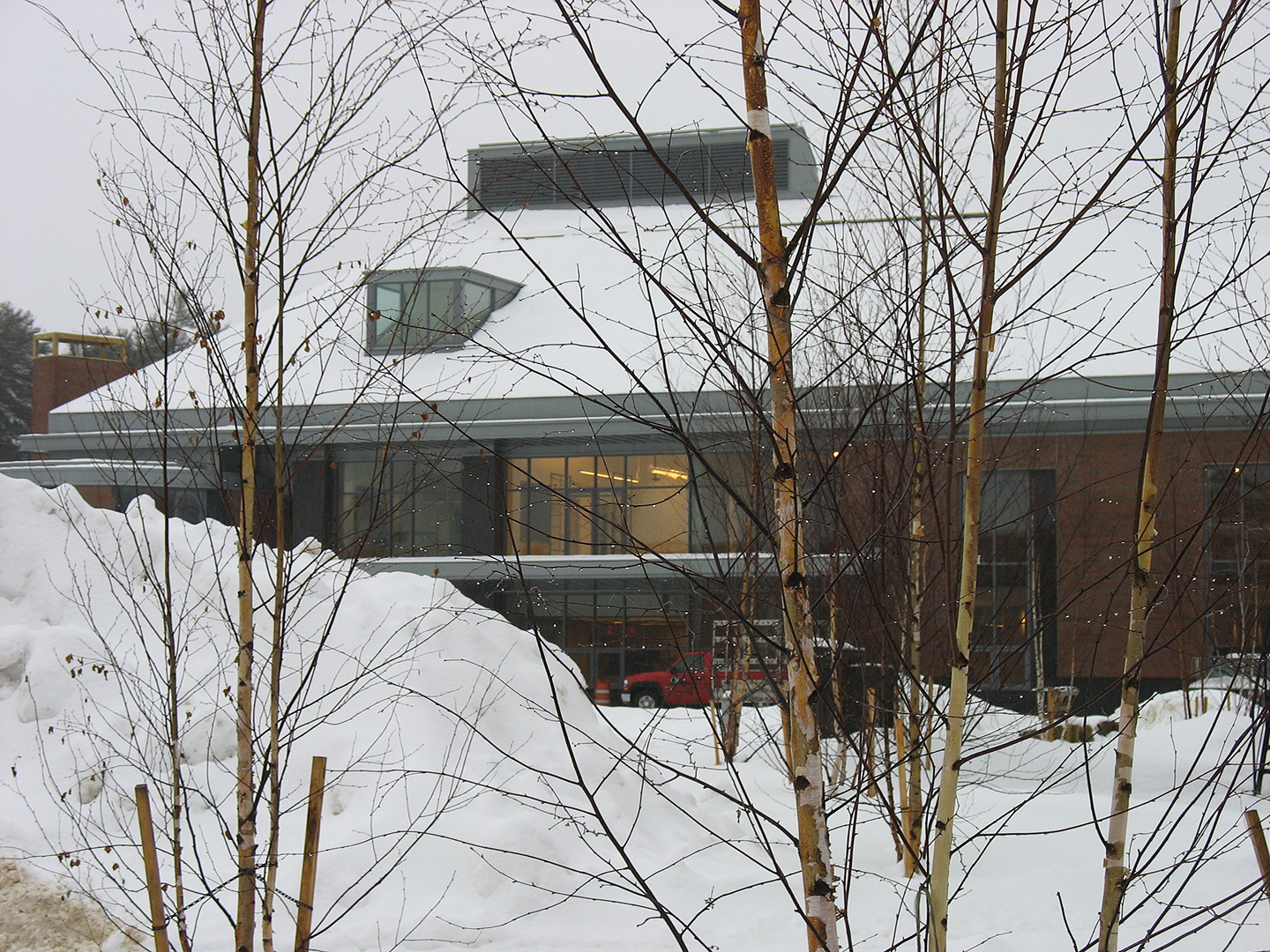 A view of the new Commons through Alumni Walk birches on a January day. (Doug Hubley/Bates College)