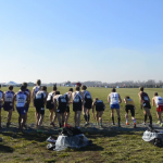 Video: 'In the Running' — men's cross country at NCAA Championships