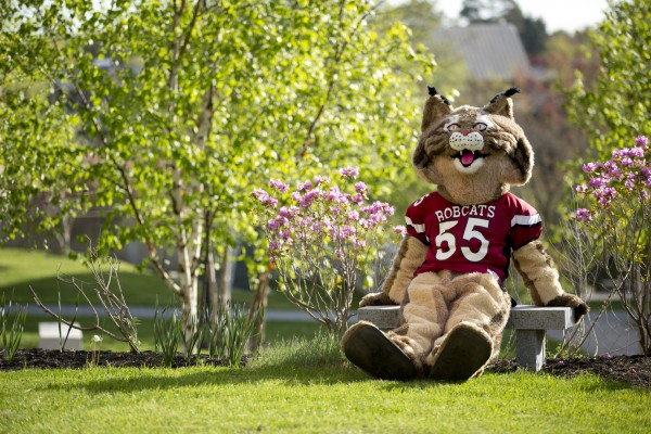 The Bobcat looks forward to May 15, when Bates seeks 555 additional alumni donors to the Bates Fund in one day. Photo by Phyllis Graber Jensen/Bates College