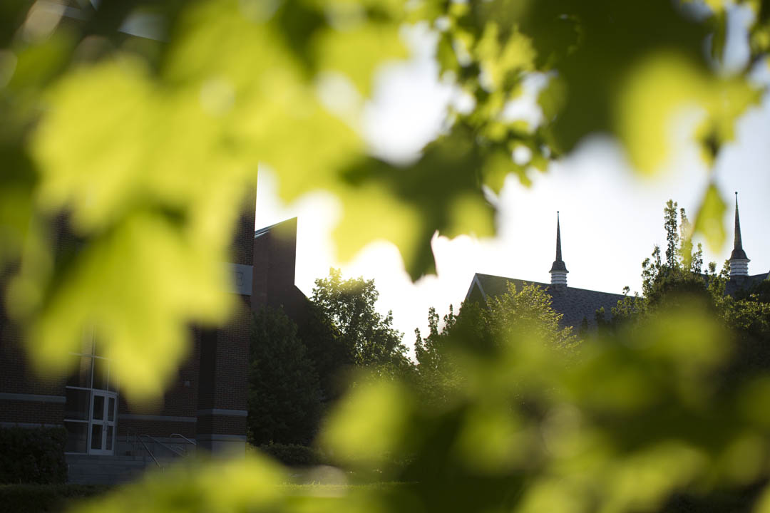 Sunlit trees frame Carnegie Science and Chase Hall. (Phyllis Graber Jensen/Bates College)