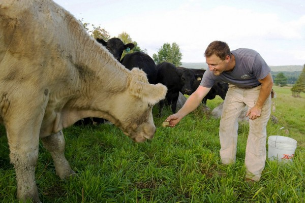 Gabe Clark '02 owns Cold Spring Ranch and is president of the Maine Grass Farmers Network. (Phyllis Graber Jensen)