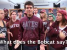 'What Does the Bobcat Say' parody video 'might be the best one' out there