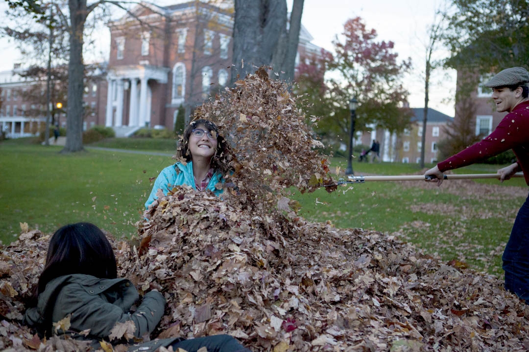 The Discordians' annual fall Leaf Jump provides an immersion experience. (Sarah Crosby/Bates College)