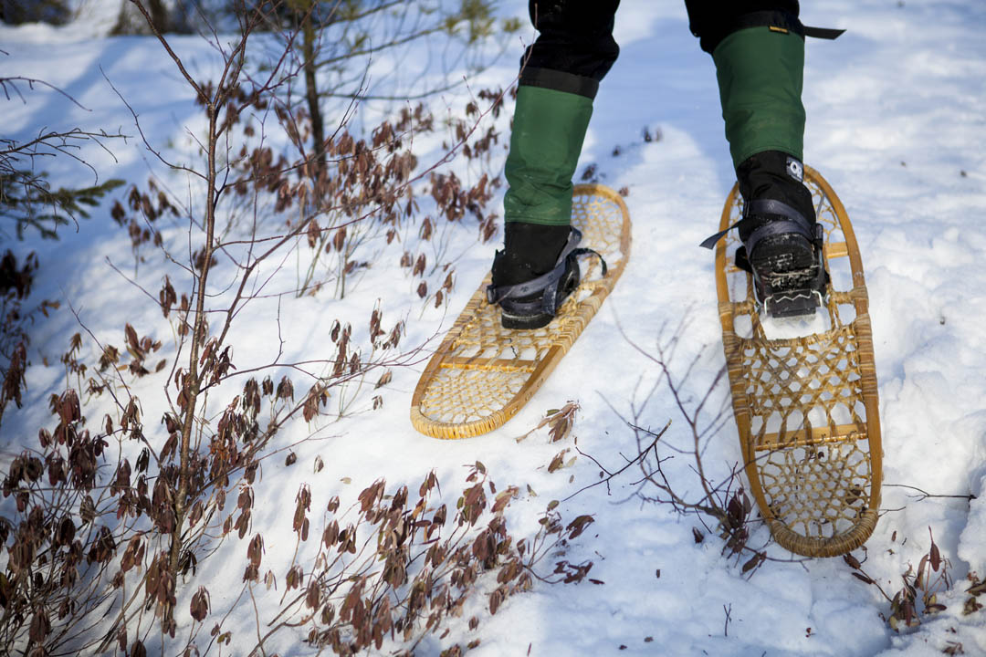 "Associate Professor of Environmental Studies Holly Ewing snowshoes through Garcelon Bog on a field trip with students in her course ""Scientific Approaches to Environmental Issues."" (Sarah Crosby/Bates College)"