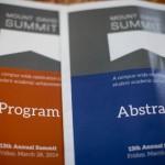 Slideshow: 2014 Mount David Summit's happy, if trippy, scene