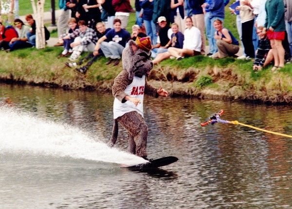 The waterskiing Bates Bobcat (Stu Abelson '97) ends his trek across Lake Andrews on May 23, 1997. (Jose Leiva)
