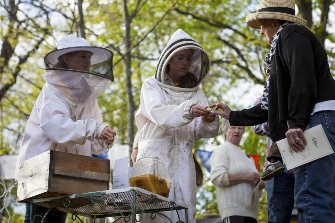 Wearing bee-tending suits, Kelsey Mehegan '15 of Duxbury, Mass., and Krista Prouty '15 of Norwell, Mass., offer honey samples at Nezinscot Farm on May 21. The sampling preceded a special dinner served by students in Associate Professor of African American Studies Myron Beasley's Short Term course that explored ideas around food, farming and hospitality. (Sarah Crosby/Bates College)