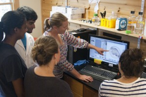 Bates biology professor Larissa Williams discusses the image of a zebrafish embryo at the Mount Desert Island Biological Laboratory on July 23. Mostly from Bates, the students with her are, from left, Nabil Saleem '15, Roshni Mangar (College of the Atlantic '16), Katie Paulson '15 and Sophie Salas '15. (Bill Church/MDIBL)