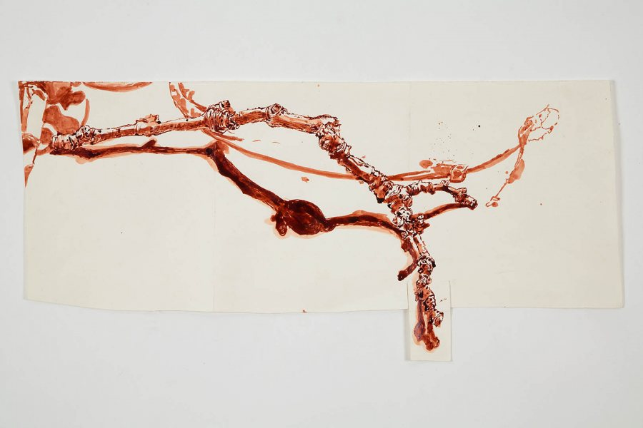 """Branch and Shadow"" (2008), shellac-based ink on paper by Dawn Clements."