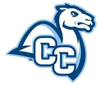 Conn College color