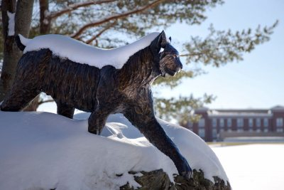 On a recent winter morning, the Bobcat carries a coat of snow. (Phyllis Graber Jensen/Bates College)